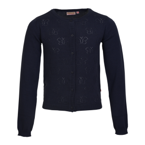 Gilet tricot navy