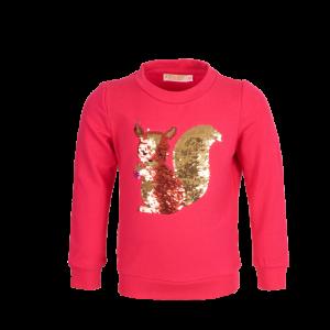 Sweater eekhoorn logo
