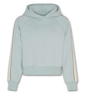 Hoodie sweater logo